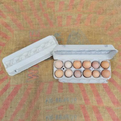 Gray Paper Mache Egg Cartons