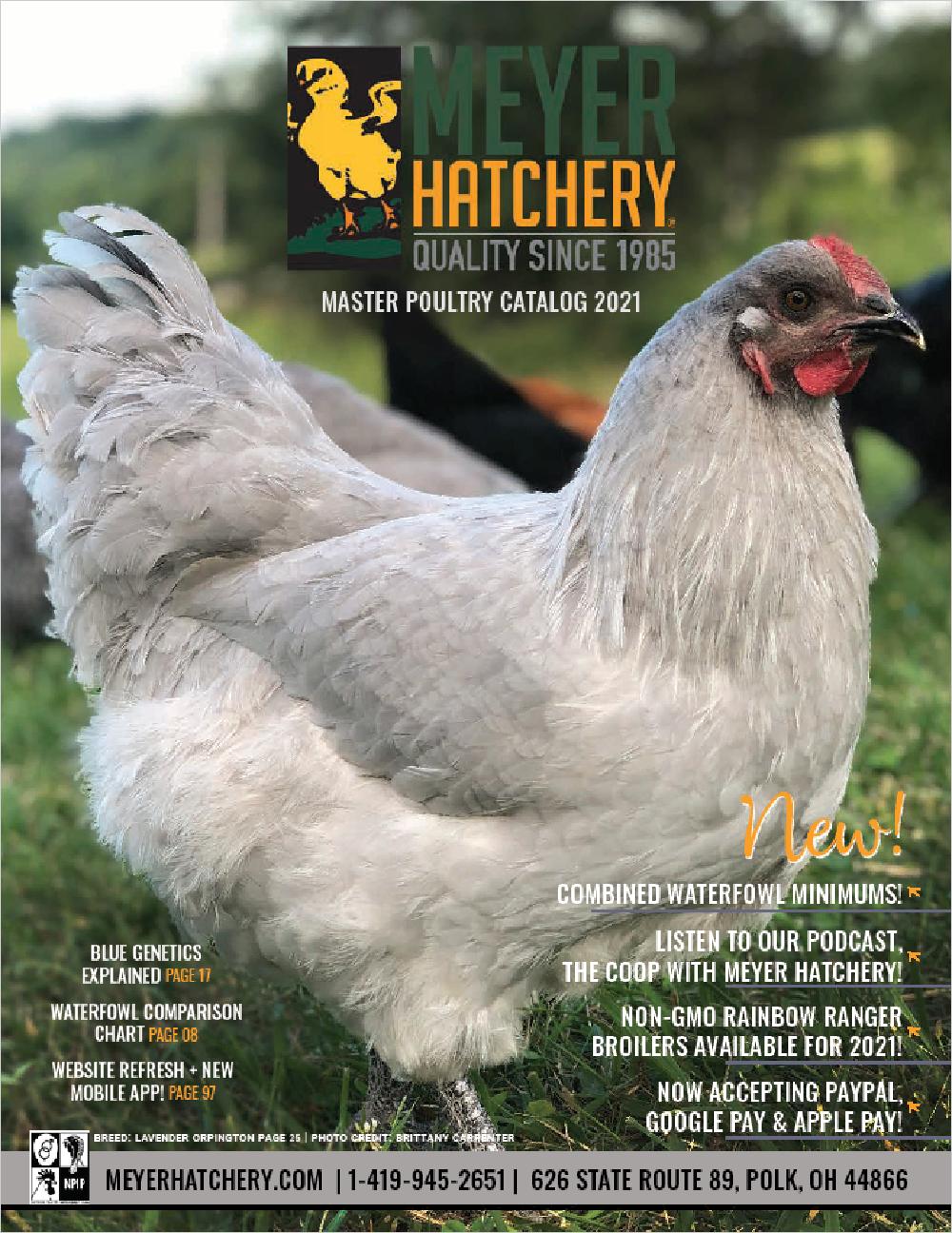 Meyer Hatchery Full-Color Catalog