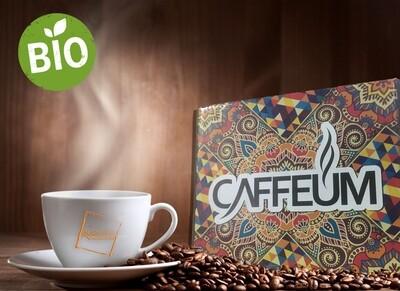 BIO -100 cialde - CAFFEUM - limited edition