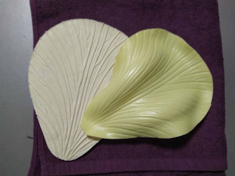 Формируем универсальный лепесток, подойдёт для нескольких видов цветков  ВИДЕО