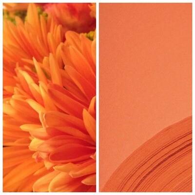 Евролон 2мм, Икспи - Апельсин ширина 100 см