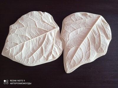 Молды НОВИНКА - КОМПЛЕКТ Листья Пиона 13,5х15см (круглый) + 12х16см (заостренный)