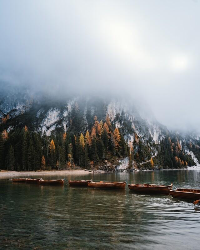 Under the fog - Fotografi