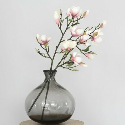 Tall Pink Magnolia Branch