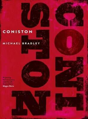 Coniston by Michael Bradley