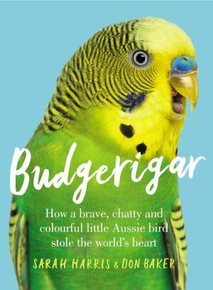 Budgerigar by Sarah Harris and Don Baker