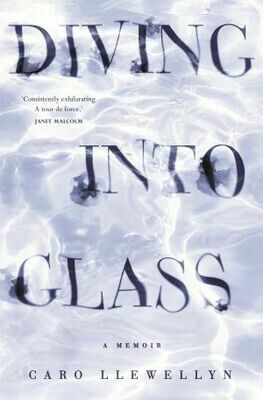 Diving into Glass by Caro Llewellyn