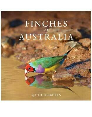 Finches of Australia by Cole Roberts