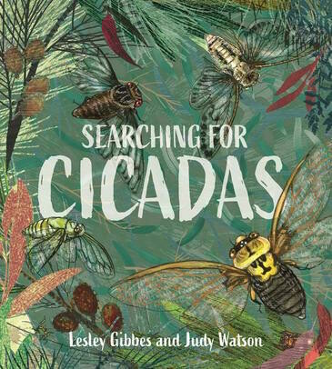 Searching for Cicadas by Lesley Gibbes. Illustrated by Judy Watson