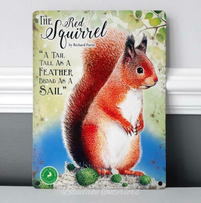 The Squirrel From The British Wildlife Collection Metal Wall Sign Countryside