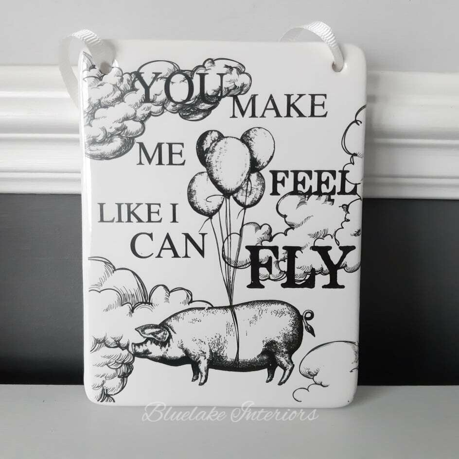 You Make Me Feel Like I can Fly Pig  Design Ceramic Wall Plaque