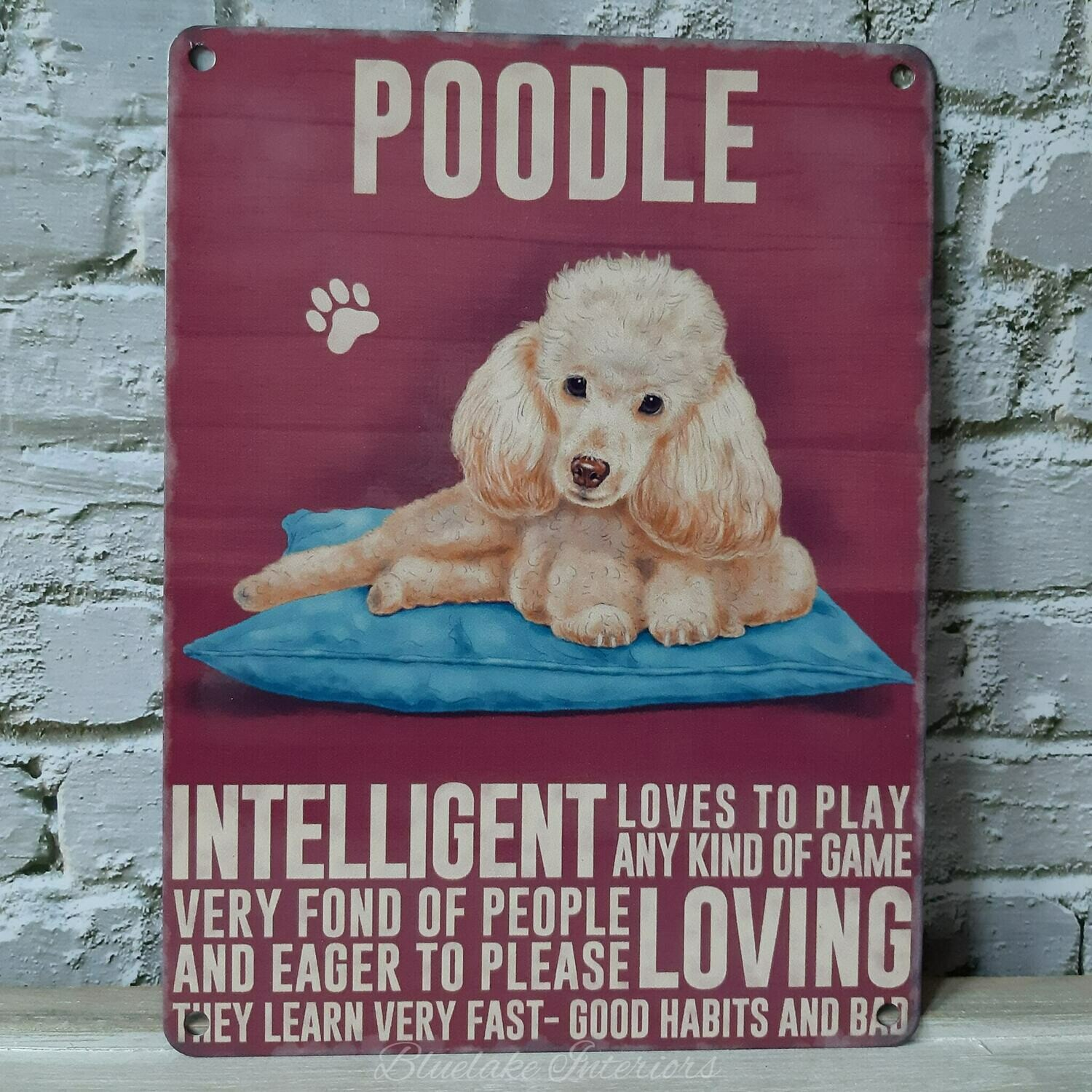Amber Poodle Metal Wall Sign