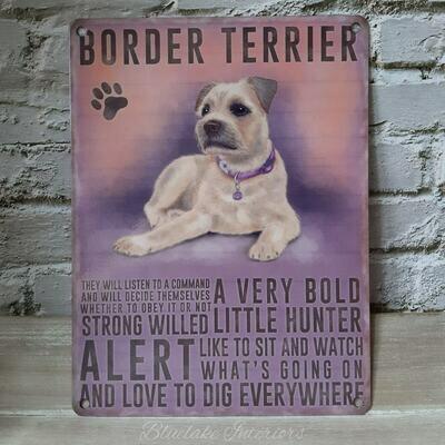 Border Terrier Dog Metal Sign