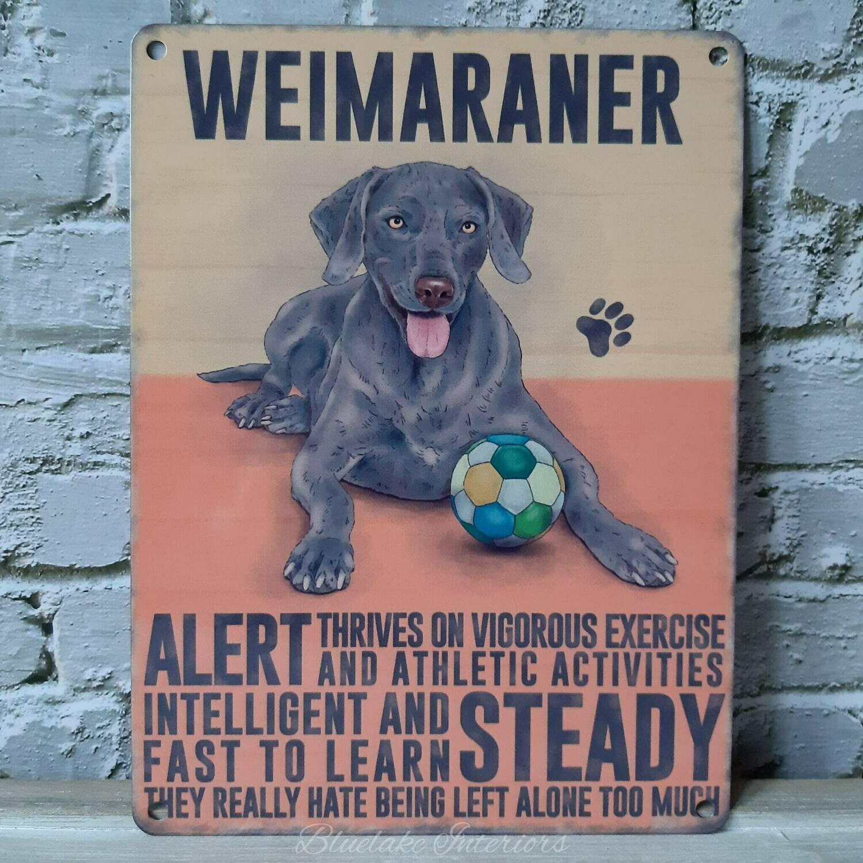 Weimaraner Gun Dog Metal Wall Sign