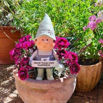 Potting Shed Garden Gnome Ornament Grow Your Own Happiness