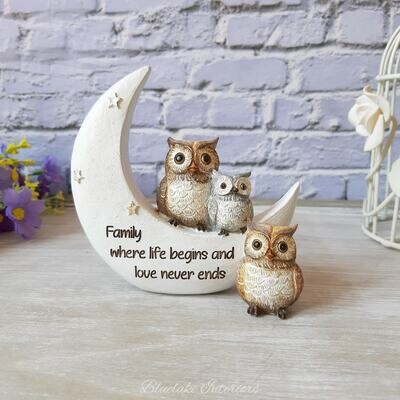Family Where Life Begins And Love Never Ends Night Owl Ornament
