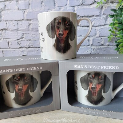 A House Is Not A Home Without A Dachshund Man's Best Friend Gift Boxed Mug