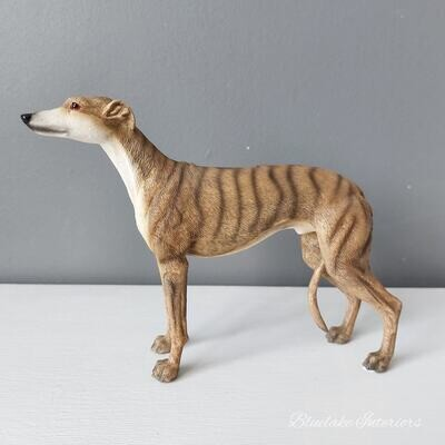 Standing Brindle Greyhound Dog Ornament Gift Boxed by Leonardo