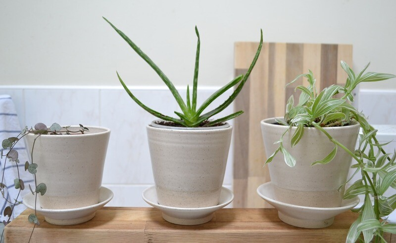 Trio of plant pots
