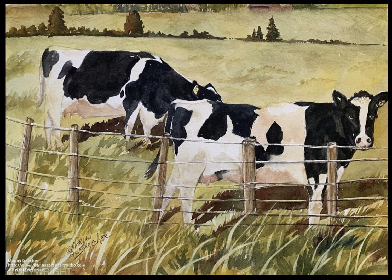 Black Cows Painting - Marian Sprecher