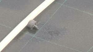 Dramm Aquofol Filter Cloth Roll Capillary Mat