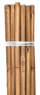 Grower's Edge Bamboo Stake Packs