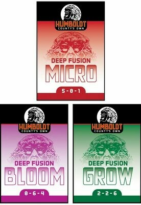Humboldt County's Own Deep Fusion Bloom