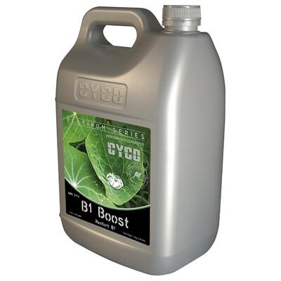 Cyco B1 Boost 2-1-4