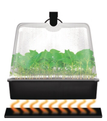 Super Sprouter Premium Heated Propagation Kit with Light