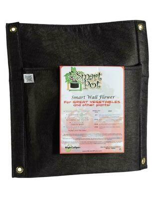Smart Pot Wall Flower Fabric Pot Hanging Planter 3 gallon