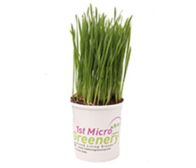 Pet Grass Superfood