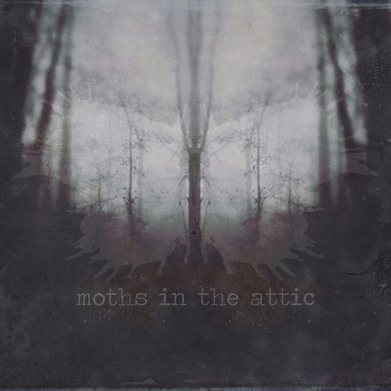Moths in the Attic CD