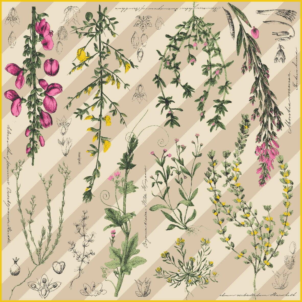 manipuri シルクスカーフ 65×65cm FLOWER BOOK ピンク