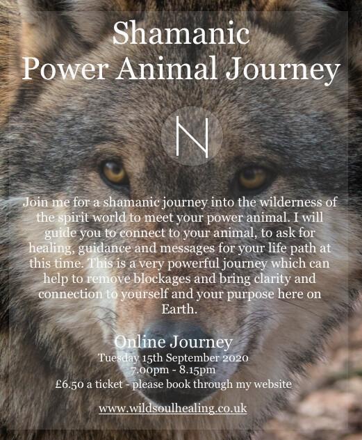 Shamanic Power Animal Journey