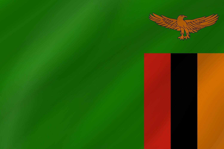 Zambia Company - LLC.
