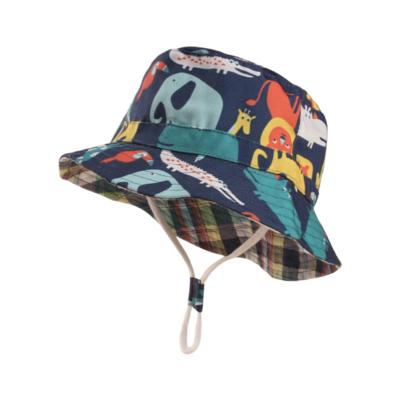 Sombrero Wild
