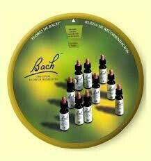 Bach Flower Remedies in Action pdf