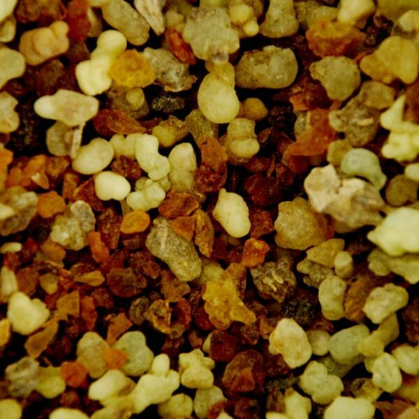 """Frankincense & Myrrh scented - 11"""" Intense Incense Sticks and small Cones - Made Fresh to Order"""