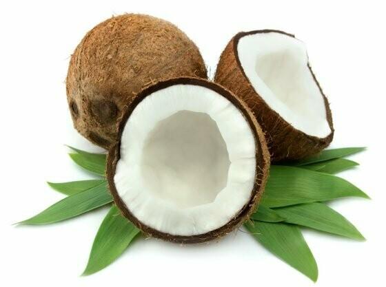 "Coconut scented - 19"" JUMBO Sticks - Intense Incense  - Long Lasting, Slow Burn - Made Fresh to Order"
