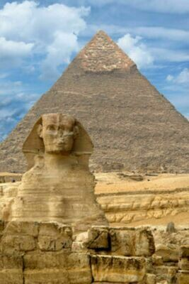 Egyptian Musk- 19