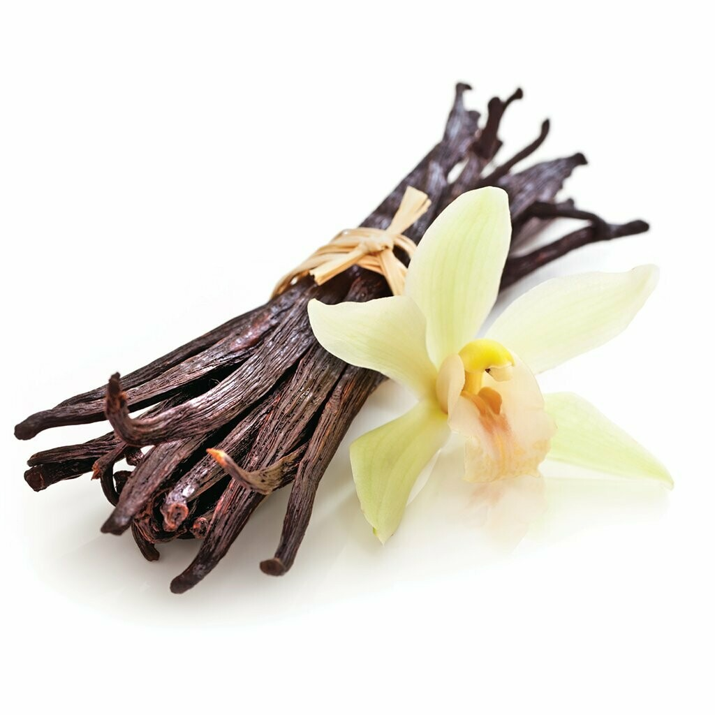 """French Vanilla scented - 11"""" Intense Incense Sticks and small Cones - Made Fresh to Order"""