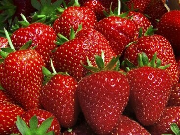 Strawberry - All Natural Oil