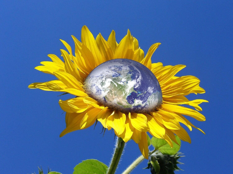 "Earth Flower scented - 19"" JUMBO Sticks - Intense Incense  - Long Lasting, Slow Burn - Made Fresh to Order"