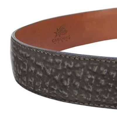 Shark Belt