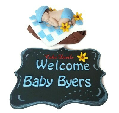 Fondant Baby in a Picnic Basket Baby Shower Cake Topper and Chalkboard Fondant Plaque