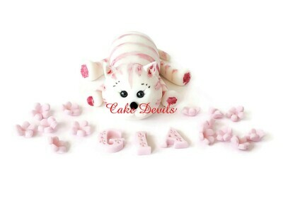 Fondant Cat Cake Topper with Flowers and name, Pink Cat