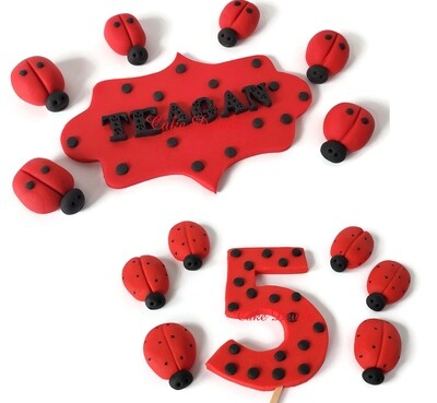 Fondant Ladybug Cake Topper Kit with personalized name plaque and age