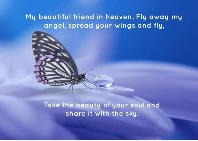 Friend in Heaven Spread Your Wings