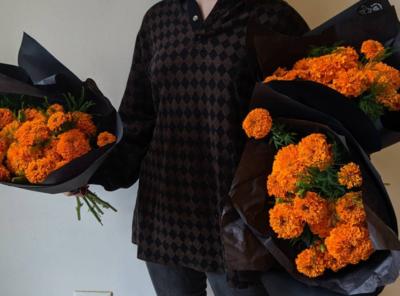 Cempasuchil / Marigolds OCTOBER 20 - OCTOBER 26