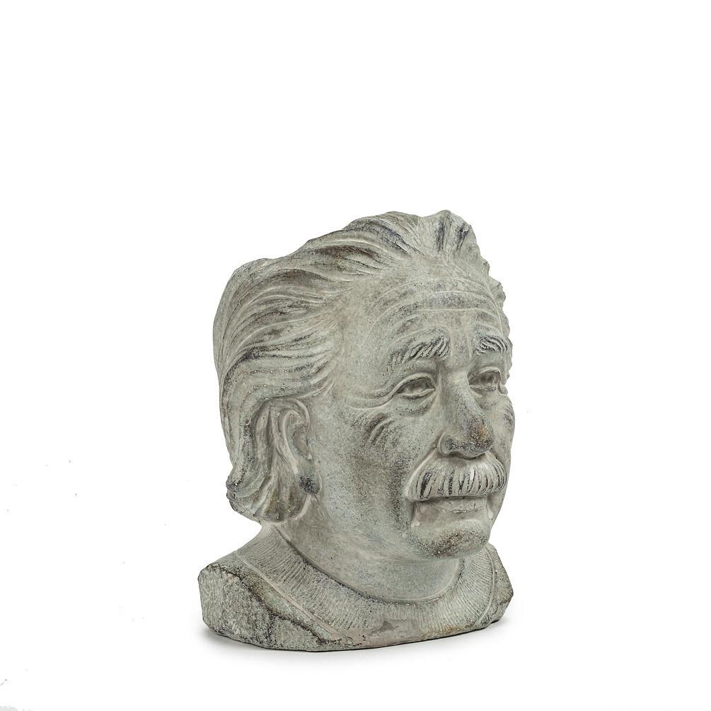 Einstein Head Planter